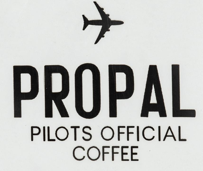 پروپل _ Propal